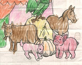 2018 Canfield Fair Coloring Contest
