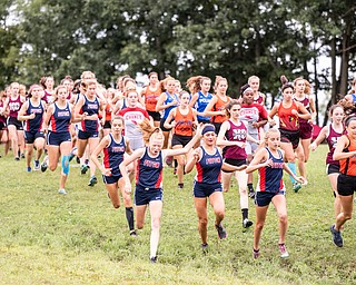 DIANNA OATRIDGE | THE VINDICATOR Varsity girls cross country teams begin the race in muddy conditions at  the Suburban Cross Country meet at Austintown Park on Tuesday.