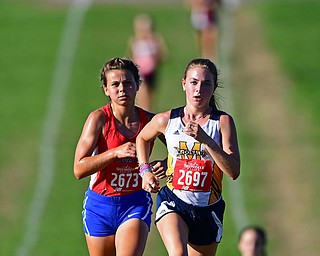 Cross Country at Fairgrounds