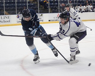 Madison's Daniel Petrick passes the puck as Youngstown's Joey Abate tries to block him during the second period of their game at Covelli Centre on Friday night. EMILY MATTHEWS   THE VINDICATOR
