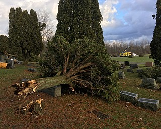 This Is Hillside Cemetery in Bazetta Township just east of Mosquito Lake where about 10 trees fell and a cemetery storage building was destroyed this morning in high winds. On the west side of the lake there was also similar damage reported on Bazetta Road at Everett Hull road.