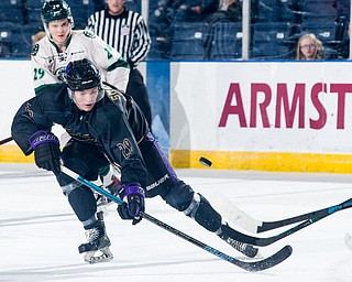 Scott R. Galvin   The Vindicator.Youngstown Phantoms forward Arsenii Smekhnov (20) goes for a loose puck against the Cedar Rapids RoughRiders during the second period at the Covelli Centre on Saturday, January 19, 2019.  The Phantoms lost 4-2.