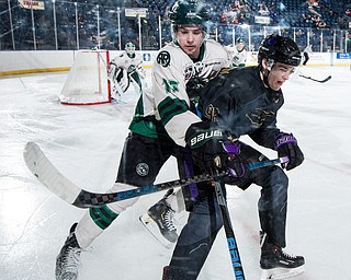 Scott R. Galvin   The Vindicator.Youngstown Phantoms forward Liam Robertson (92) skates into the corner along with Cedar Rapids RoughRiders defenseman Jack Millar (15) for the puck during the third period at the Covelli Centre on Saturday, January 19, 2019.  The Phantoms lost 4-2.