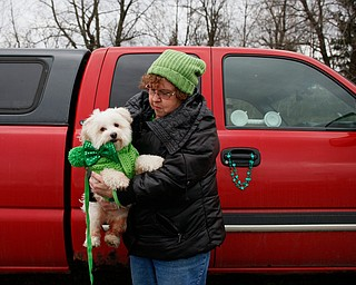 Norma Goodhart, of Boardman, holds her Maltese Snowball before the start of the Mahoning Valley St. Patrick's Day Parade in Boardman on Sunday afternoon. EMILY MATTHEWS | THE VINDICATOR
