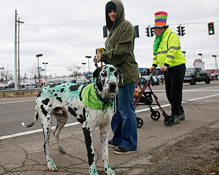 Amber Cribbs, of New Castle, walks her Great Dane Duncan, whom she dyed green with food coloring, with Randy Pope, right, of Pulaski, Pa., at the end of the Mahoning Valley St. Patrick's Day Parade in Boardman on Sunday afternoon. EMILY MATTHEWS | THE VINDICATOR