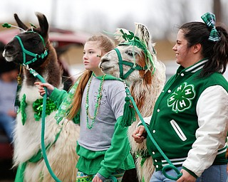 Luciana Vigliotti, of Lowellville, left, and Sam Colonna, of Struthers, walk with llamas Sparky, left, and Redbull as part of the 4-H Club's Lucky Llamas in the Mahoning Valley St. Patrick's Day Parade in Boardman on Sunday afternoon. EMILY MATTHEWS | THE VINDICATOR