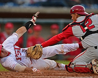 NILES, OHIO - MAY 14, 2019: Youngstown State's Dylan Swarmer is tagged out at home plate by Ohio State's Brent Todys in the seventh inning of Tuesday nights game at Eastwood Field. Ohio State won 7-4. DAVID DERMER | THE VINDICATOR