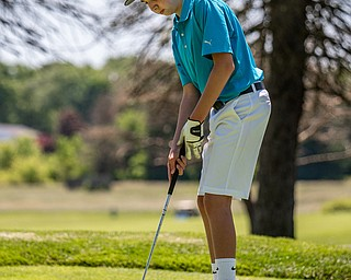 DIANNA OATRIDGE | THE VINDICATOR Nick Vassis, 15, of Vienna, watches his tee shot on Hole No. 7 during the Greatest Golfer of the Valley Junior Qualifier at Pine Lakes in Hubbard on Tuesday.