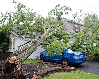 Heavy storms brought down a tree and live wires in front of Nicole and Shawn Varley's house and onto Shawn's car at 8207 Longview Dr. in Howland on Sunday. EMILY MATTHEWS | THE VINDICATOR