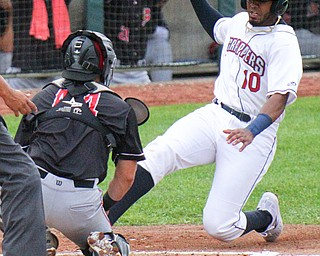 William D. Lewis the vindicator Srappers Eric Rodriguez(10) is taggd out at the plate by Batavia catcher Igor Baez during 6-17-19 game at Eastwood.