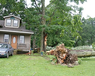 ROBERT K.YOSAY  | THE VINDICATOR..People from Warren to Brookfield are cleaning up after SundayÕs damaging winds after learning that the mess indeed was created by a tornado and possibly a series of touchdowns...two trees fell at the house across from the Brookfield Cemetery