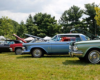 Antique cars are diplayed at the 41st annual Cars in the Park car show in Boardman Park on Sunday afternoon. Proceeds from the car show will go to Harper, Foley, 4, who has Dravet Syndrome, a catastrophic form of epilepsy. EMILY MATTHEWS | THE VINDICATOR