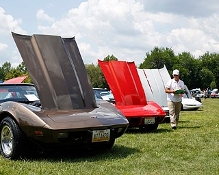 Bob Gamble, a judge at the 41st annual Cars in the Park car show, looks at Chevrolet Corvettes in Boardman Park on Sunday afternoon. Proceeds from the car show will go to Harper, Foley, 4, who has Dravet Syndrome, a catastrophic form of epilepsy. EMILY MATTHEWS | THE VINDICATOR