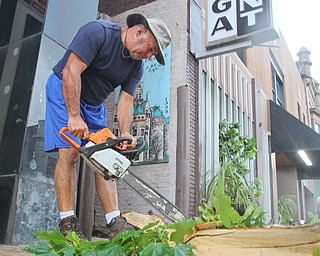 William D. Lewis the vindicator Bob Sudzina, an employee of the Saratoga in Warren, uses a chain saw to remove downed tree limbs in front of the popular E. MArket St eatery in Warren after fast moving storm hit Tuesday 8-6-19 afternoon.